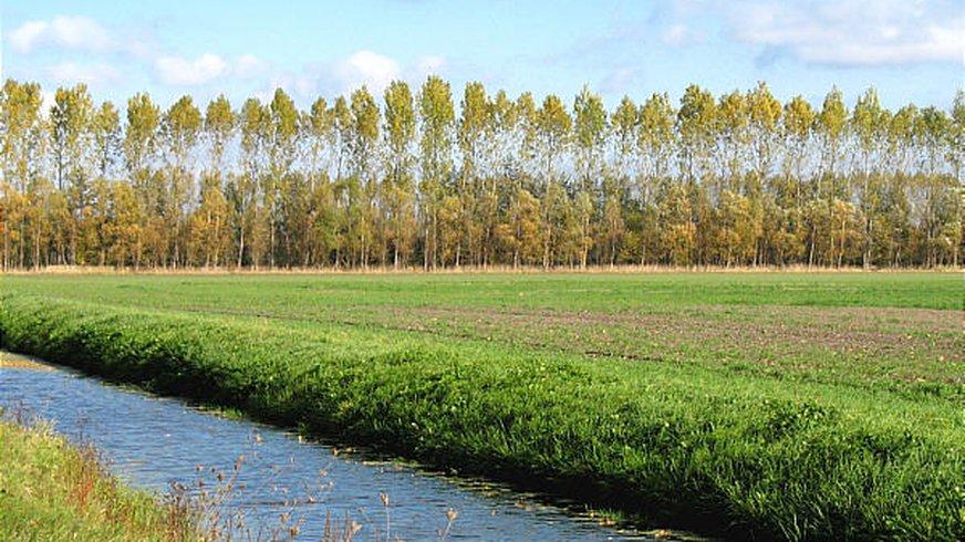 Felder bei Neuholland, Landkreis Oberhavel